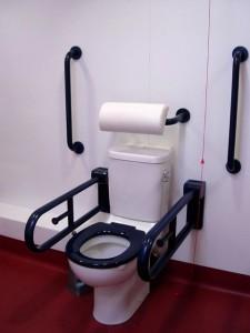 Y Toilet